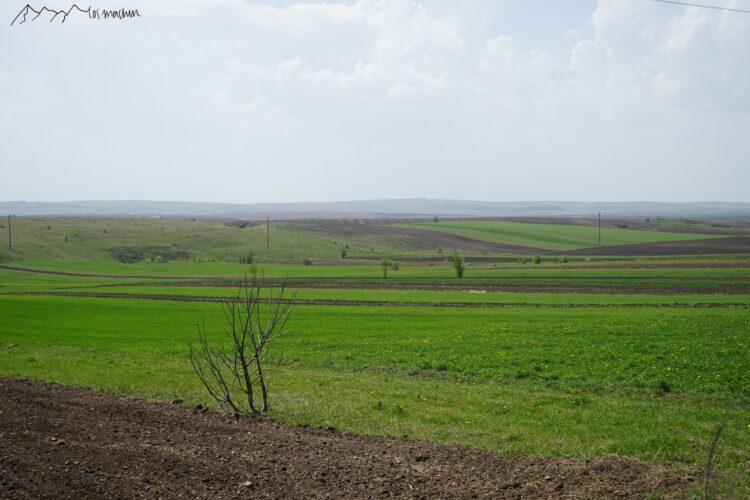 Blick in ukrainische Felder