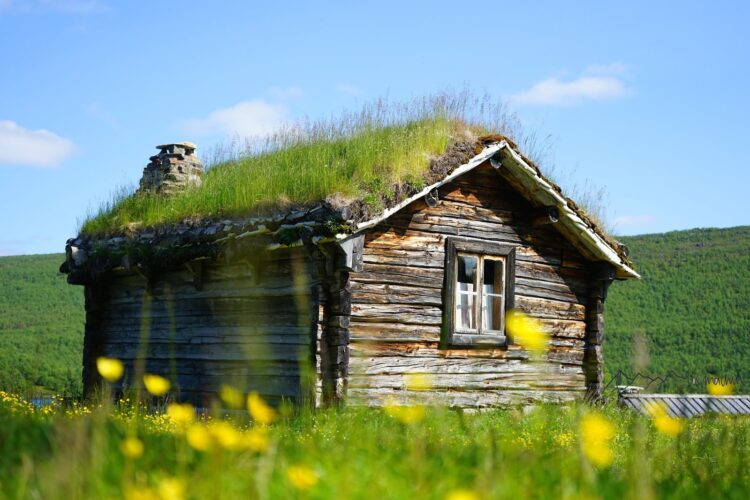 Holzhütte in Blumenwiese alte Bauweise