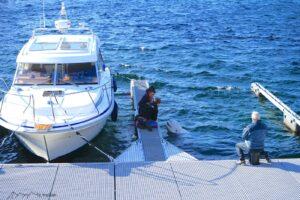 Hammerfest Wal ist im Hafenbecken zutraulich