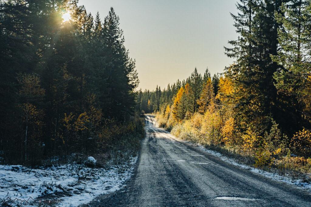 Roadtrip Schweden: Morgenstimmung beim vanlife